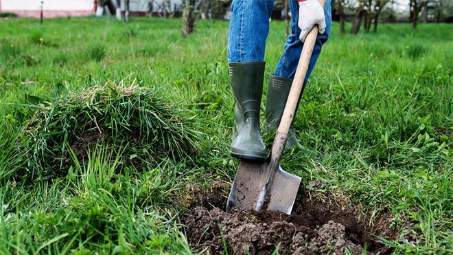 подготовка земельного участка для продажи