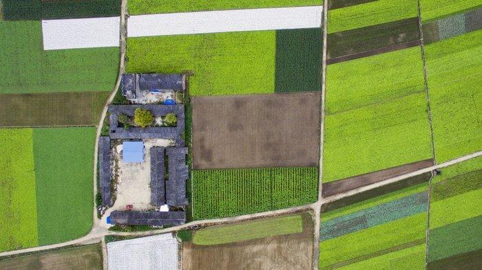 Определение категории земельного участка