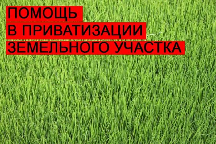 pomoshh-v-privatizatsii-zemelnogo-uchastka
