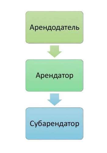 Общие положения