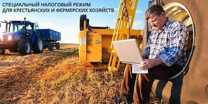 spetsialnyj-nalogovyj-rezhim-dlya-krestyanskih-ili-fermerskih-hozyajstv