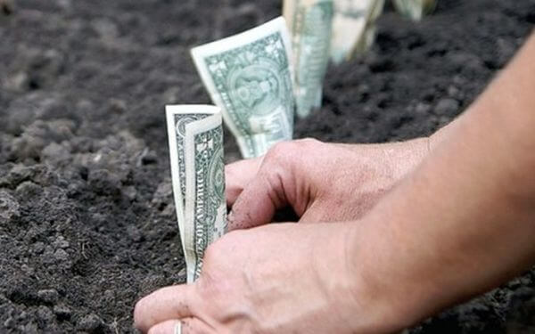 кто освобождается от уплаты земельного налога
